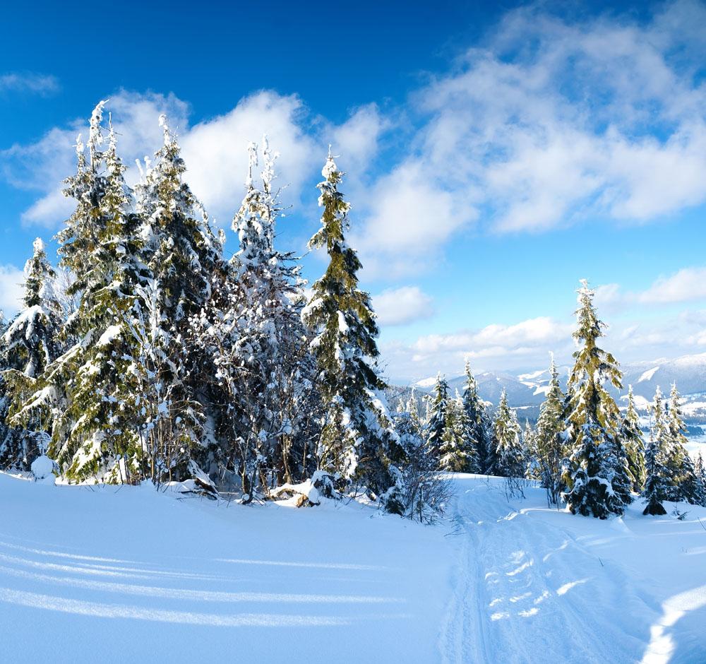 家乡的冬天有奖征文活动_关于家乡的冬天的作文_作文网